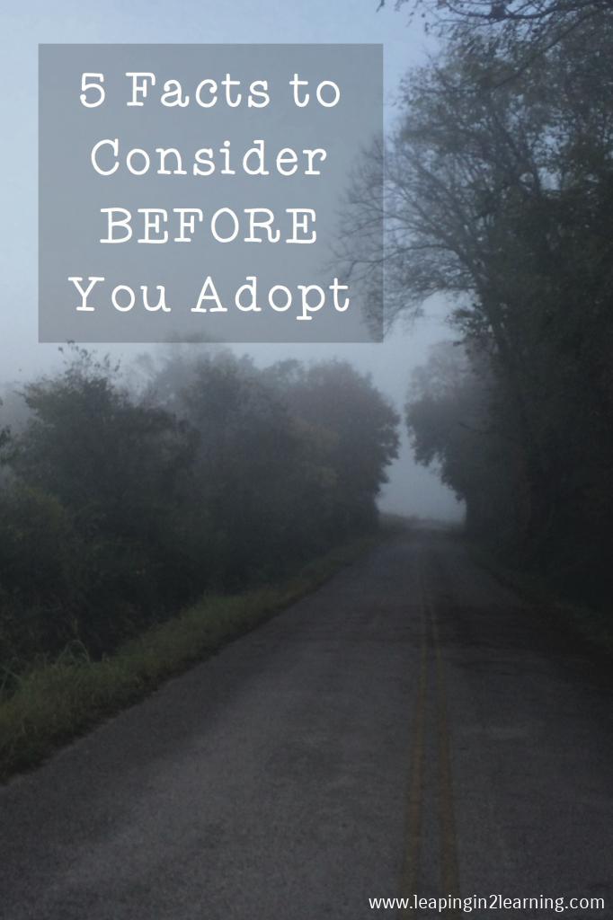 AdoptioninHindsightFacts